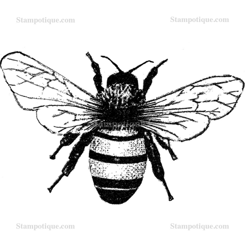 medium bee w tiny bee
